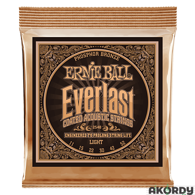 ERNIE BALL Everlast PB .011/.052 - 1