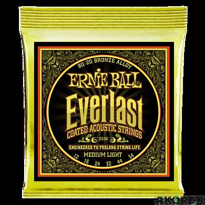 ERNIE BALL Everlast 80/20 .012/.054 - 1