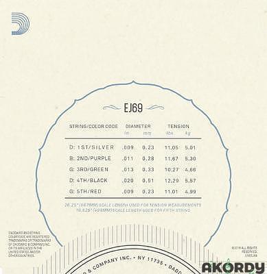 D'ADDARIO EJ69 .009/.020 - 2
